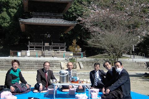 熊野神社の桜・花見